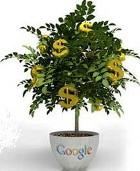 денежное дерево приносит богатство владельцам этого сайтика